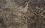 Купить ступень из керамогранита Коллекция Fossil Brown Lappato