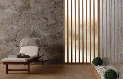 Купить Керамогранит Коллекция Natural Stone Gusto Taupe-Grey в интернет магазине Red Plit